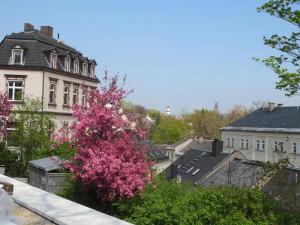 Blick-Rathaus