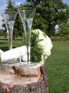 Hochzeit_web_R_B_by_Lupo_pixelio.de
